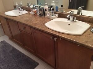 Bathroom Cabinet, Sinks, & Faucets