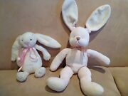 Nursery bunnies Allambie Heights Manly Area Preview