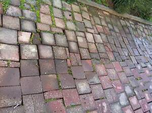WE FIX PAVING and lots more - LIFT, LEVEL AND RELAY - REPAIR North Brighton Holdfast Bay Preview