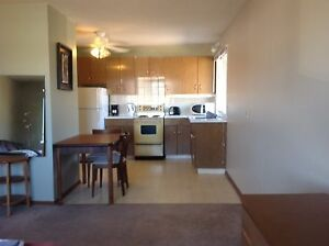 Fully Furnished Bachelor Apartment available!!