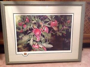 Framed picture by Julia Hargreaves