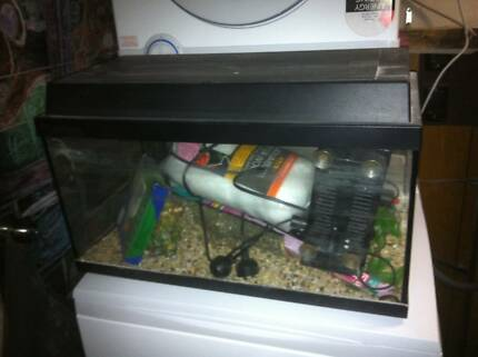 Complete Fish Aquarium With Accessories Beenleigh Logan Area Preview