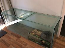 5ft fish tank with glass top Petrie Pine Rivers Area Preview