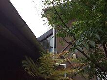 Loft living in leafy Ivanhoe overlooking Darebim Parklands Ivanhoe Banyule Area Preview