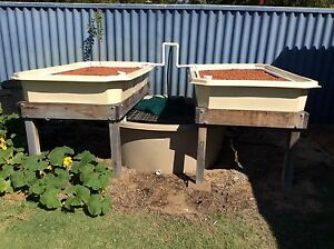 Aquaponics system Booragoon Melville Area Preview