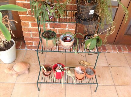 Wanted: Plant Stands