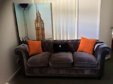 Silvery grey Velvet Chesterfield 3 seater sofa Oxley Brisbane South West Preview