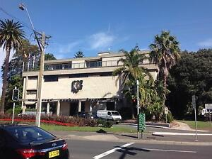 Mixed Business for sale - Prime Location & lots of Potentials! Bondi Junction Eastern Suburbs Preview