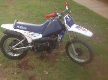 Yamaha pw peewee 80 motorbike for fun fun fun Prospect Prospect Area Preview
