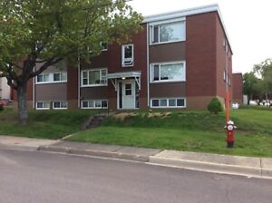 258 Leslie st has a 1 bedroom apartment available