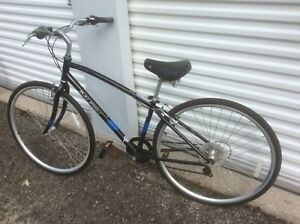 RALEIGH BICYCLE- NEW