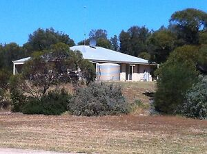 Hobby Farm by the Sea, Brick 4x2 house on 7.8 acres Dongara Irwin Area Preview