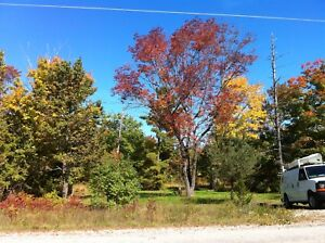 Waubaushene, Tay, 3.3 Acres, partially cleared, vacant land