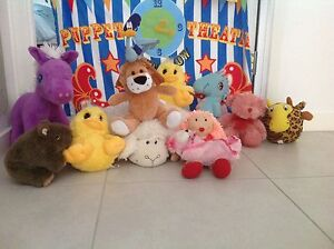Fluffy toys Forest Glen Maroochydore Area Preview