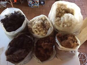 Alpaca Fleece (various weights/prices) North Toowoomba Toowoomba City Preview