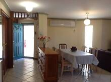 Affordable, 3-room apartment close to city