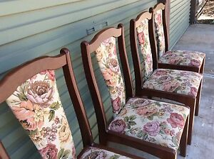 4 classy dining chairs Clovelly Park Marion Area Preview