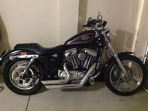 2007 Harley Davidson Sportster Limited Edition Shelley Canning Area Preview