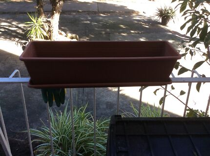 Plant containers Dolls Point Rockdale Area Preview