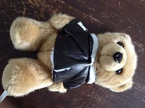 Care flight teddy bear Maroubra Eastern Suburbs Preview