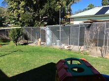 Weld mesh wire Gymea Sutherland Area Preview