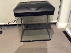Fish tank in immaculate condition