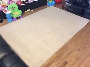 5' x7' rug, excellent condition