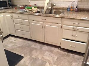 Solid wood cabinets and counter top