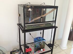 Reptile tank/vivarium. Angle Vale Playford Area Preview