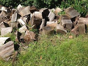 Firewood - seasoned blocks Thirroul Wollongong Area Preview