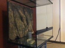 Reptile terrarium / aquarium / enclosure Kalgoorlie 6430 Kalgoorlie Area Preview