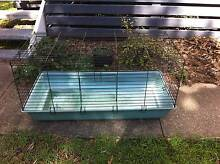 Animal cage Keperra Brisbane North West Preview