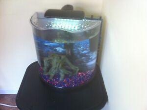 Free 20 gallon aquarium