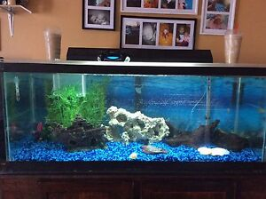70 gal for sale