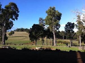 Hobby Farm 100 Acres, 2 shares of 6 available Collie Collie Area Preview