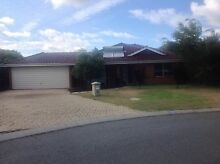 House to rent in Sorrento 1km from the beach Sorrento Joondalup Area Preview