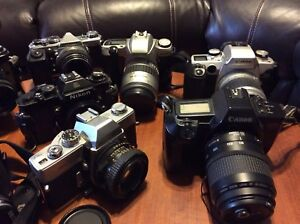 Huge lot. Cameras and lenses!!!