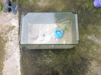 Fish tank for amphibians, small reptiles and fish Keilor Downs Brimbank Area Preview
