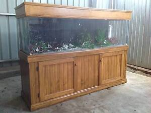 Large 6ft aquarium with wooden cabinet and fish tank accessories Gawler East Gawler Area Preview