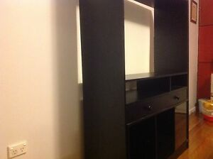 Entertainment TV Unit Canley Heights Fairfield Area Preview