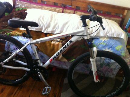 Phoenix mountain bike ASAP Sale Woodcroft Blacktown Area Preview
