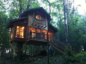 """Tiny house"" à louer"