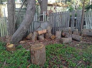FREE - Firewood Russell Island Redland Area Preview
