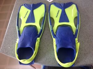 Blue/yellow flippers