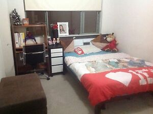One private room rent in Kingsford for Coulples or Single Kingsford Eastern Suburbs Preview