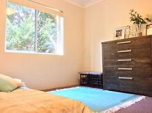 Room for rent in Hornsby Hornsby Hornsby Area Preview