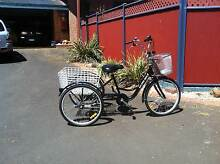 Tricycle for adult Lara Outer Geelong Preview