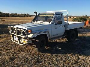 6.5 N/a Chev powered Landcruiser Traytop 1995 Wongan Hills Wongan-Ballidu Area Preview