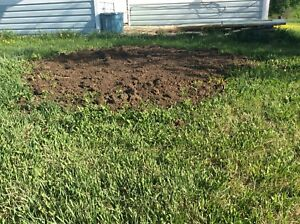 Well composted/ top soil