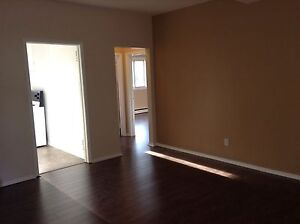 very large one bedroom apt in a central location